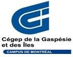CEGEP College